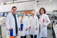 RNA-Modifikationen markieren und aufspüren