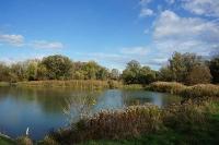 Flussauenwasser nach dem Reinheitsgebot