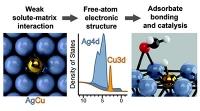 Neue Muster für Hochleistungs-Katalysatoren entdeckt