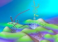 Forscher entschlüsseln zentrales Reaktionsprinzip von Metalloenzymen