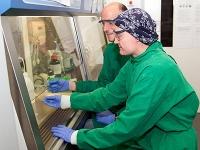 Neue Ziele im Kampf gegen Antibiotika-Resistenzen