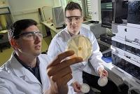 Pilz produziert hochwirksames Tensid