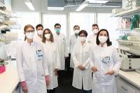 """Wissenschaftler entdecken bakterielle """"Protein-Schere"""" und zeigen dadurch neue Behandlungsoptionen für Lebererkrankungen auf"""