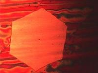 Zehn Billionen Atome in Reih' und Glied