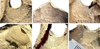 Archäologen untersuchen Fingerabdrücke auf spätrömischer Keramik