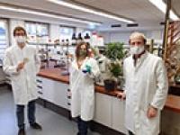 Bakterium produziert pharmazeutische Allzweckwaffe