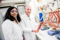 Ultradünne transparente Silberschichten für Solarzellen