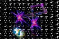 Proteinstrukturen von Viren deutlich schneller analysieren