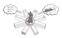 Gedankenlesen bei Ratten