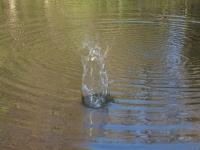 Weltwassertag: Was machen eigentlich polare Stoffe im Trinkwasser?