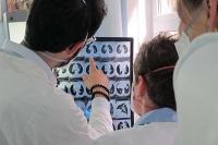 Ungleiche Behandlung der multiresistenten Tuberkulose in Europa