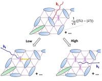 Experimenteller Nachweis fundamentaler Prozesse in Quanten-Spinflüssigkeiten