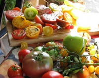 Was steckt drin in der Tomate?