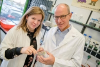 Kleine RNA macht Bakterien resistenter gegen Antibiotika