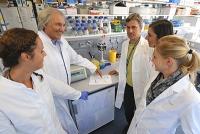 CD83-Protein ist essentiell für die Kontrolle von Autoimmunreaktionen