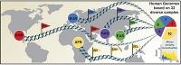 64 menschliche Genome als neue Referenz für die globale genetische Vielfalt