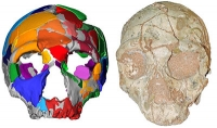 Frühester Homo sapiens außerhalb Afrikas in Griechenland gefunden