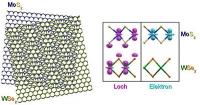 Fernbeziehung auf Teilchenebene: Elektron-Loch-Paare in zweidimensionalen Kristallen
