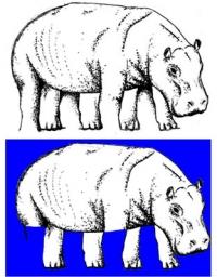 Das Prinzip der optischen Täuschung technisch imitiert