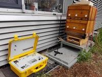 Gesunde Luft im Bienenstock? Chemiker der TU Dresden untersuchen die chemische Grundlage der Bienenstocklufttherapie