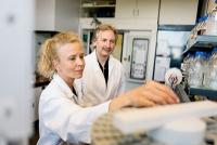 Künstliche Enzyme aus DNA