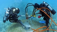 Ein Korallenbohrkern beweist: Im Pazifik sinkt der pH-Wert