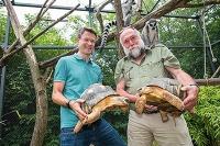 Blutproben aus dem Zoo helfen bei der Vorhersage von Krankheiten beim Menschen