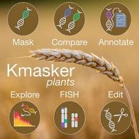 """Mit """"Kmasker plants"""" Genomsequenzen einfacher bearbeiten"""