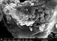 Längere Akku-Laufzeit: Lithium-Ionen-Batterien auf nächste Leistungsstufe gehoben