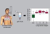 Krebsdiagnose mit Atemluft