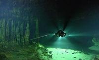 Methan als Grundnahrung: Besonderes Ökosystem in Wasserhöhlen Mexikos entdeckt