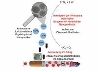 Kupferhydroxid-Nanopartikel schützen vor toxischen Sauerstoffradikalen im Zigarettenrauch