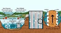 """Kohlenstoff-neutrale """"Biotreibstoffe"""" aus dem See"""