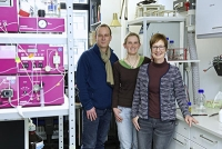 Neuartiges Enzym in Darmbakterien entdeckt