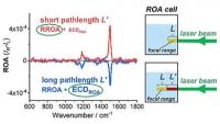 Falsche optische Aktivität korrigieren – Interferenz verfälscht Raman-spektroskopische Analysen von Vitamin B12