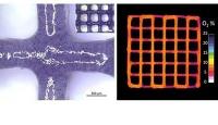 Bioprinting von künstlichen menschlichen Geweben