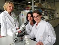 Asthma: Molekülschalter entscheidet über Wohl und Wehe