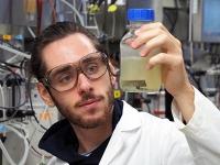 Forscher nutzen bakterielle Laugung zum Recycling von Elektroschrott