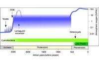 Frühes Leben auf der Erde durch Enzym limitiert