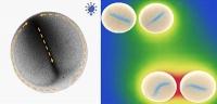 Tropfen mit Nanopartikeln, die sich organisieren und kommunizieren