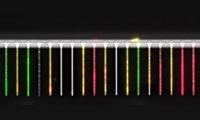 Mit Lab-on-a-chip einzelnen Bakterien auf der Spur