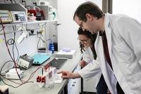 Ein genetischer Nano-Baukasten für neue Biomaterialien