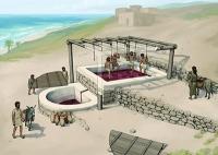 Weinpresse aus der Eisenzeit gibt Aufschluss über Bautechnik der Phönizier