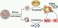 Antibakterielle Nanozyme