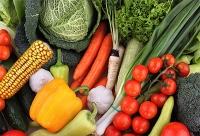 Neue Studie belegt: Bio kann einen wichtigen Beitrag zur Welternährung leisten