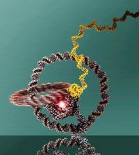 Winzige Nanomaschine absolviert erfolgreich Probefahrt
