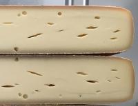 Neue Tests gegen unerwünschte Keime in Milch und Käse