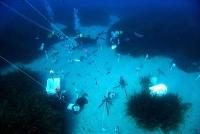Einfluss steigender Kohlendioxid-Werte auf den Meeresgrund