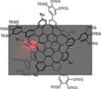 Wasserlösliches verbogenes Nanographen