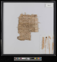 Rätsel um Basler Papyrus gelöst